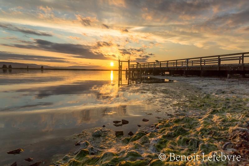 Couché de soleil à Sidney Spit en Colombie-Britannique
