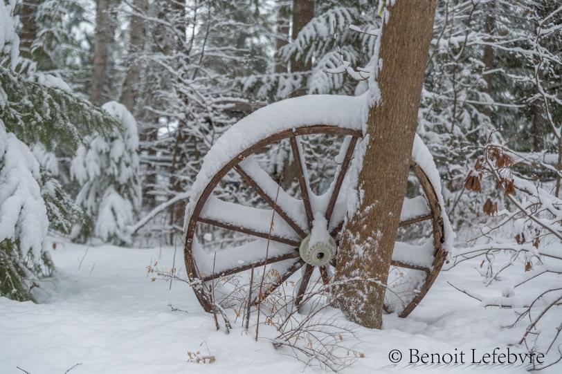 SnowWheel