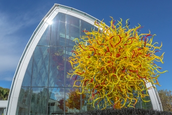 Chihuly-soleil