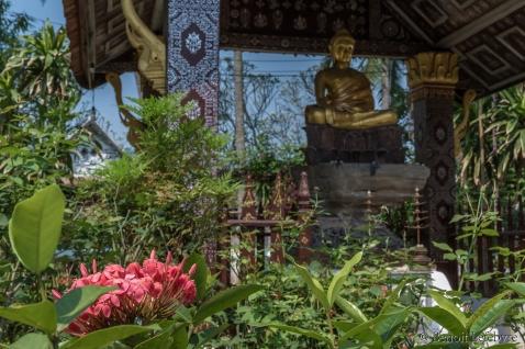 BuddhaFlowerLaos