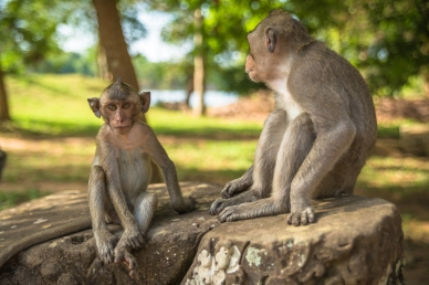 AngkorWat2015-05-20_03