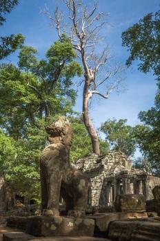 AngkorWat2015-05-20_04