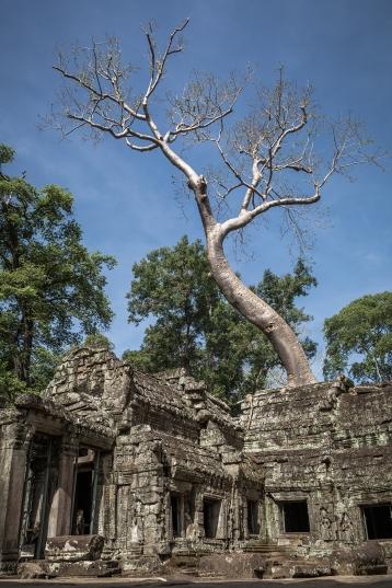 AngkorWat2015-05-20_06