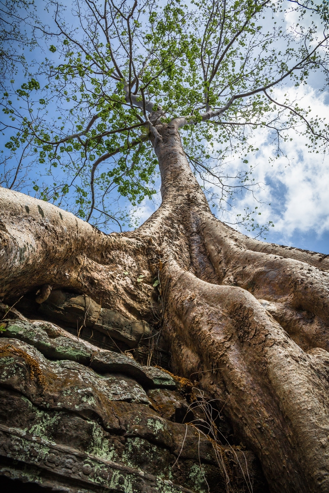 AngkorWat2015-05-20_11