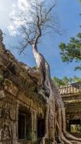 AngkorWat2015-05-20_Pano02
